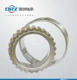 Rodamientos de rodillos cilíndricos de precisión de dos fila