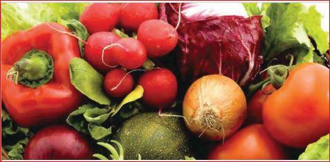 IQF Fruits & Vegetables