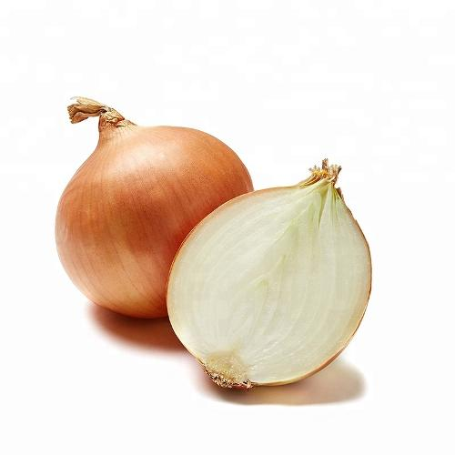 Export Chinese Fresh yellow onion with premium quality
