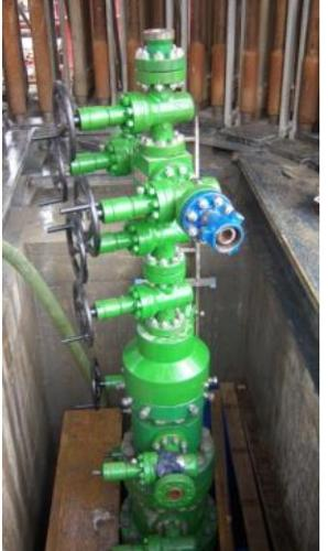 """BS-BSHD"" Surface - ""HT-HP"" Surface Wellhead"
