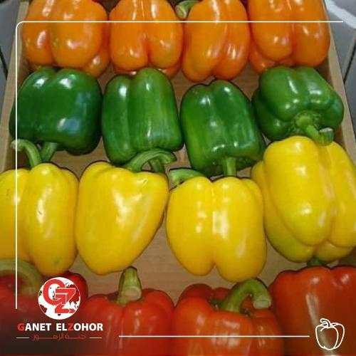 Egyptian Bell Peppers