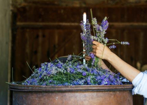 Matières premières naturelles pour parfums