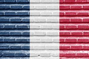 Translation from English into French