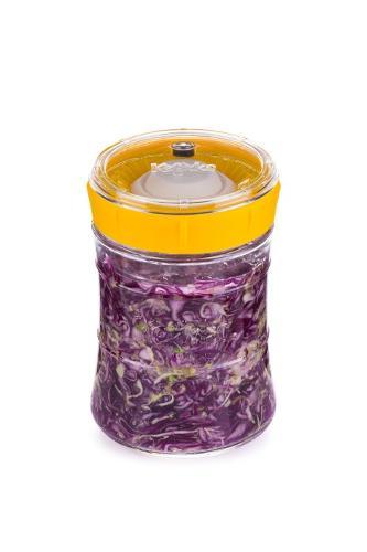 Veggie fermenter
