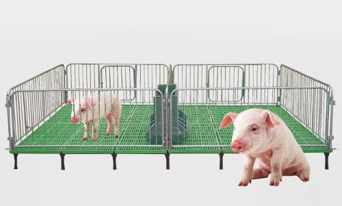 piglet livestock weaner crate/pen