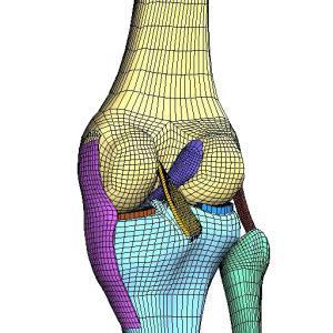FEA & CFD based Simulation & Design: Medical & Biomedical
