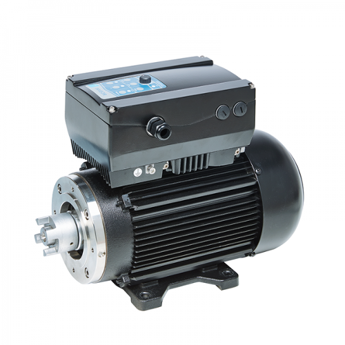 Three-phase motor with foot flange and frequency converter