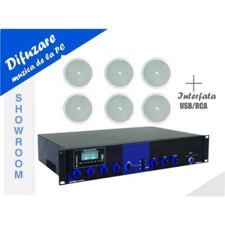 Sistem de conferinta wireless cu 4 microfoane