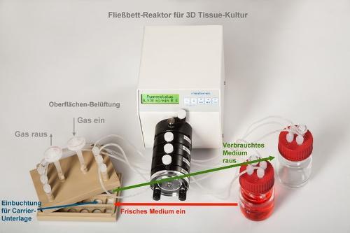 Fließbett-Bioreaktor