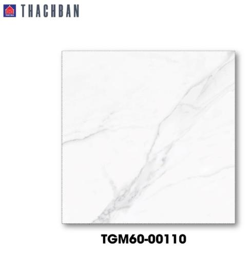 Living Room Decoration white marble matt tile