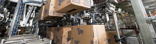 Professionals in carton processing