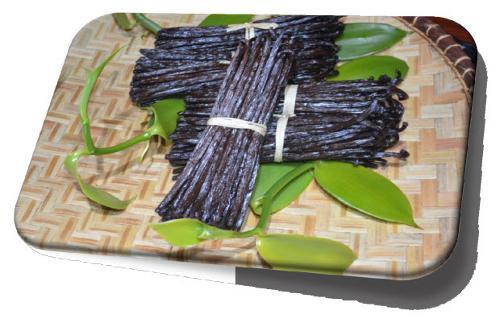 (Gourmet) Black Vanilla – Grade A