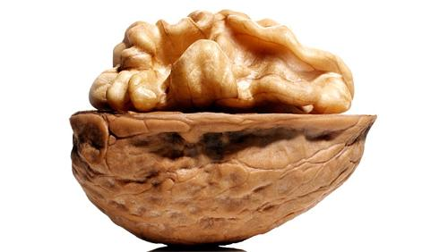 WALNUT IN SHELL PROCESSING