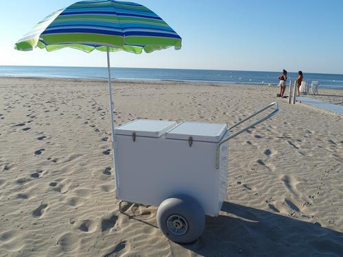 Chariot de vente ambulant à grosses roues spécial plage