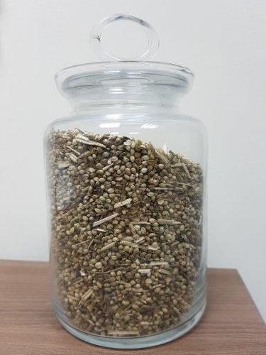 Семена технической конопли товарные