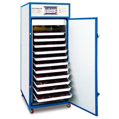 Tray Dryer for fruits and vegetables
