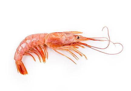 Crevettes sauvages d'Argentine entière