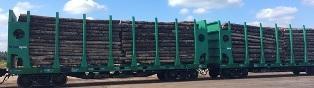 Железнодорожные платформы для перевозки леса