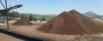 Olive biomass and olive pits