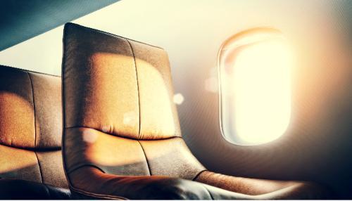 Aeroplane Leather
