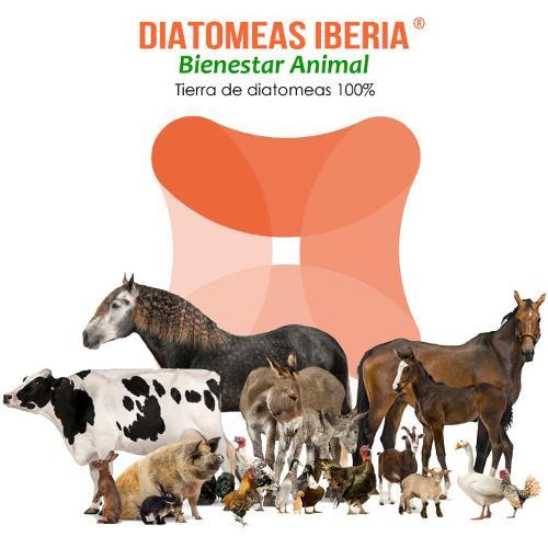 Tierra de diatomeas para animales de granja