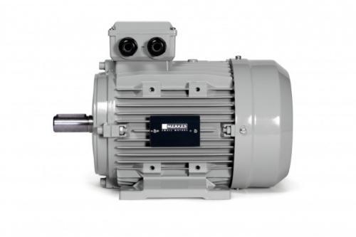 IE4 Super Premium Standard Motor - MPM 16