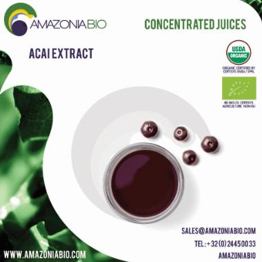 Organic Açaí Clarified Extract Concentrated