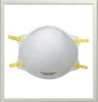 N95 Niosh Mask