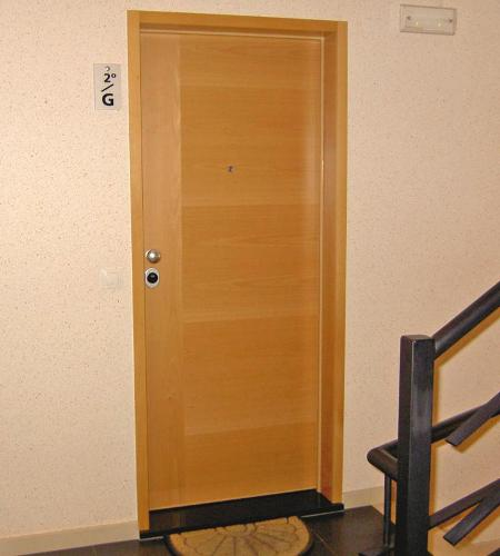 Apartment Security Fire door