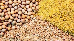 Import LiveStock Food