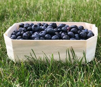 Плетеные корзины, лукошки, для ягод