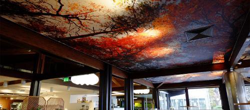 Plafond Tendu À Froid Imprimé