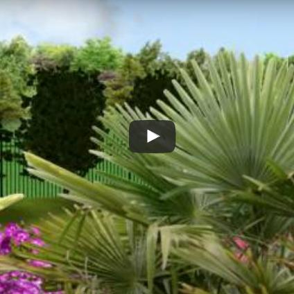 Paysagiste Clermont-ferrand : Amenagement Jardin