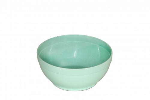 Small Plastic Bowl