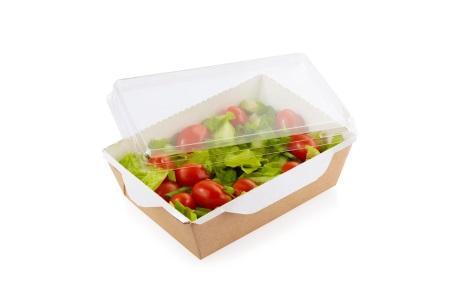 Salad Box with transparent plastic cover