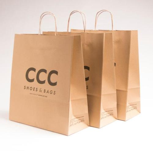 Paper bag, eco (brown) with a twisted paper handle