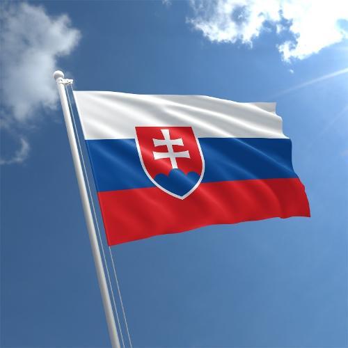 Перевозка личных вещей в Словакию
