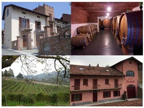 Poderi Moretti cantina aperta per visita e degustazione vini
