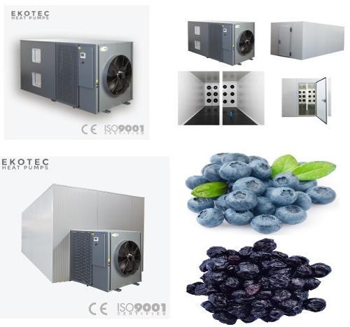 Industrial energy saving Blueberry dehydrator machine