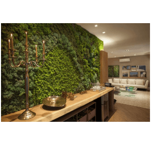 Jardim Vertical Moss Estabilizado