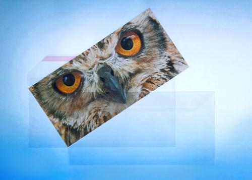 Briefumschlag aus PP - DIN C6-5