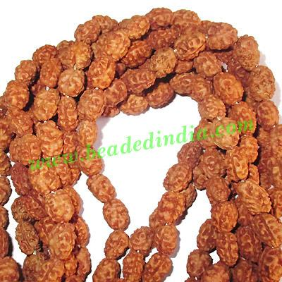 Rudraksha Beads String (mala) 2 Mukhi (two face), size: 7mm