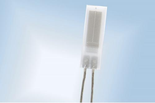 Platinum RTD temperature sensor - 750 °C Series