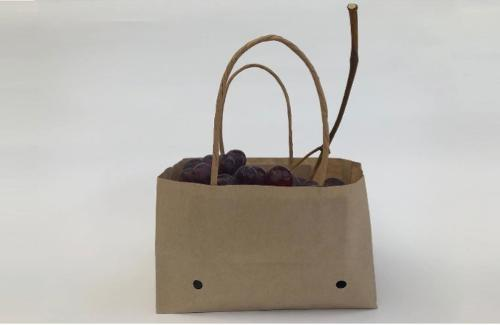 wet strength kraft paper bag for table grapes with twisted h