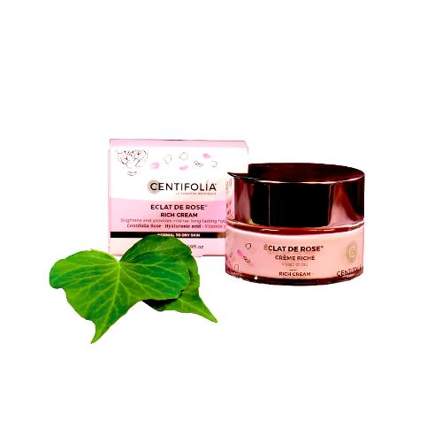 Crema Rica, Rosa Radiante – Centifolia