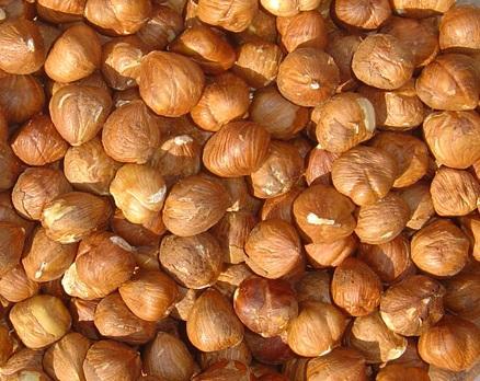 nocciole e semilavorati di nocciole
