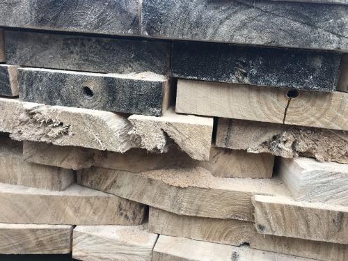 Paulownia Plank