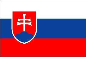 Serviço de tradução em eslovaco