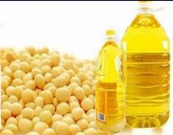 Olio di Soia Raffinato no OGM