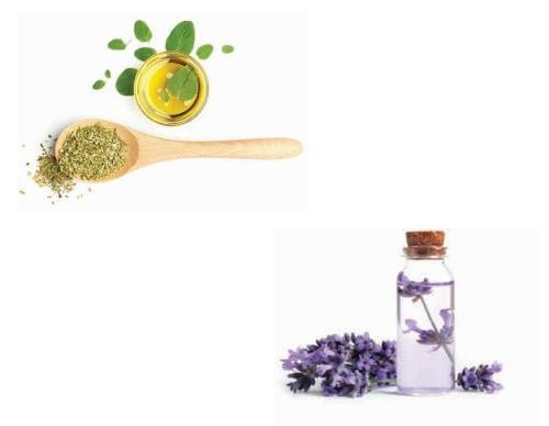 Αρωματικά Βότανα & Έλαια - Herbs & Oils
